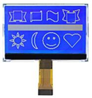 24P COG 19296 LCD Screen ST75256 IC Backlight